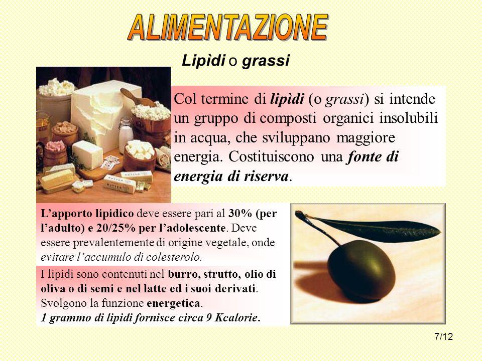 7/12 Lipìdi o grassi I lipidi sono contenuti nel burro, strutto, olio di oliva o di semi e nel latte ed i suoi derivati. Svolgono la funzione energeti