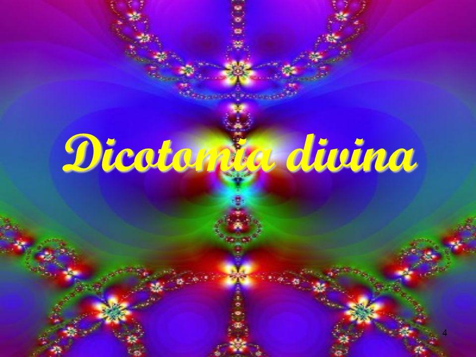 4 Dicotomia divina