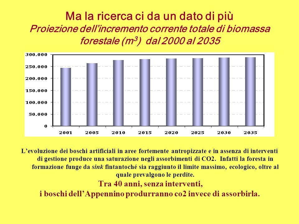 Ma la ricerca ci da un dato di più Proiezione dellincremento corrente totale di biomassa forestale (m 3 ) dal 2000 al 2035 Levoluzione dei boschi arti