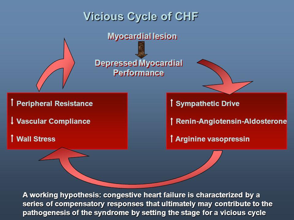 Schema decisionale.1. Stabilire che il paziente ha uno scompenso cardiaco 2.