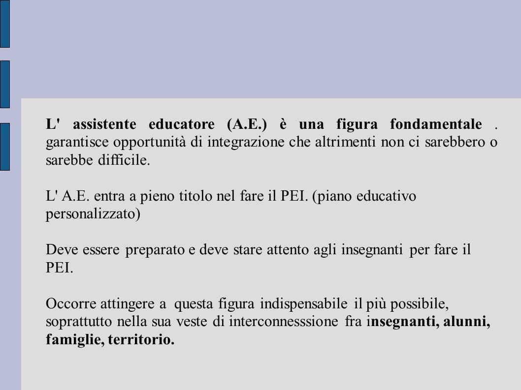 L' assistente educatore (A.E.) è una figura fondamentale. garantisce opportunità di integrazione che altrimenti non ci sarebbero o sarebbe difficile.