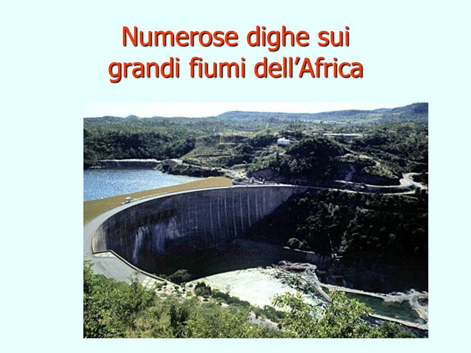 Numerose dighe sui grandi fiumi dellAfrica