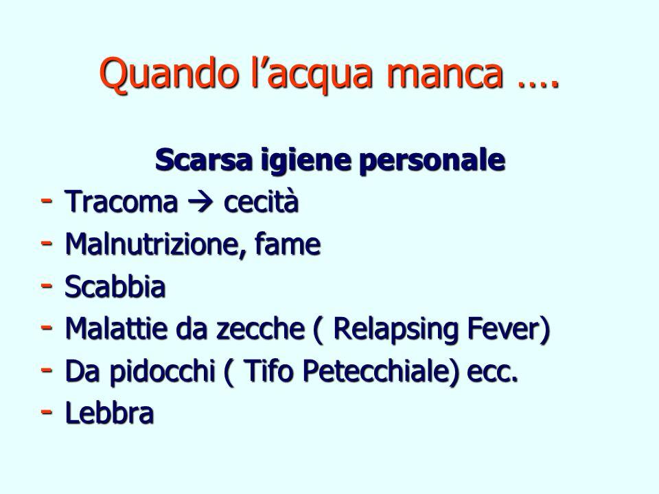 Quando lacqua manca …. Scarsa igiene personale - Tracoma cecità - Malnutrizione, fame - Scabbia - Malattie da zecche ( Relapsing Fever) - Da pidocchi