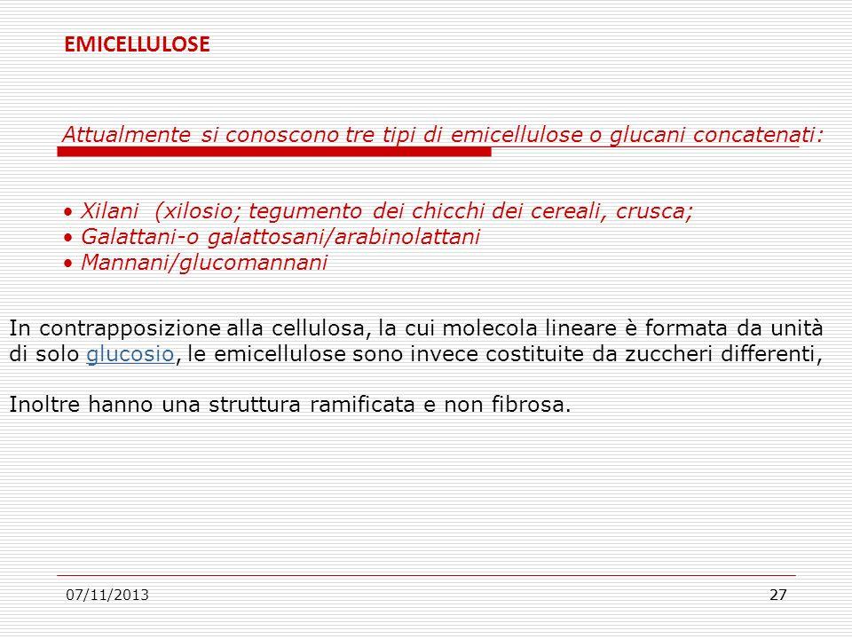 07/11/201327 Attualmente si conoscono tre tipi di emicellulose o glucani concatenati: Xilani (xilosio; tegumento dei chicchi dei cereali, crusca; Gala