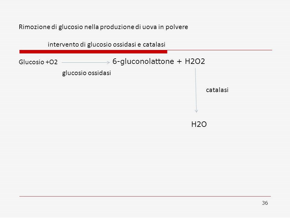 36 Rimozione di glucosio nella produzione di uova in polvere intervento di glucosio ossidasi e catalasi Glucosio +O2 6-gluconolattone + H2O2 catalasi