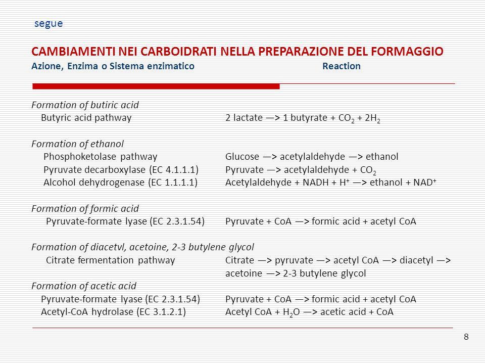 CAMBIAMENTI NEI CARBOIDRATI NELLA PREPARAZIONE DEL FORMAGGIO Azione, Enzima o Sistema enzimaticoReaction Formation of butiric acid Butyric acid pathwa