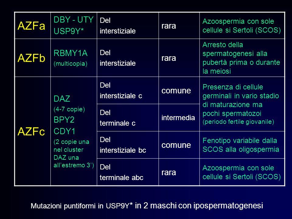 AZFa DBY - UTY USP9Y* Del interstiziale rara Azoospermia con sole cellule si Sertoli (SCOS) AZFb RBMY1A (multicopia) Del interstiziale rara Arresto de