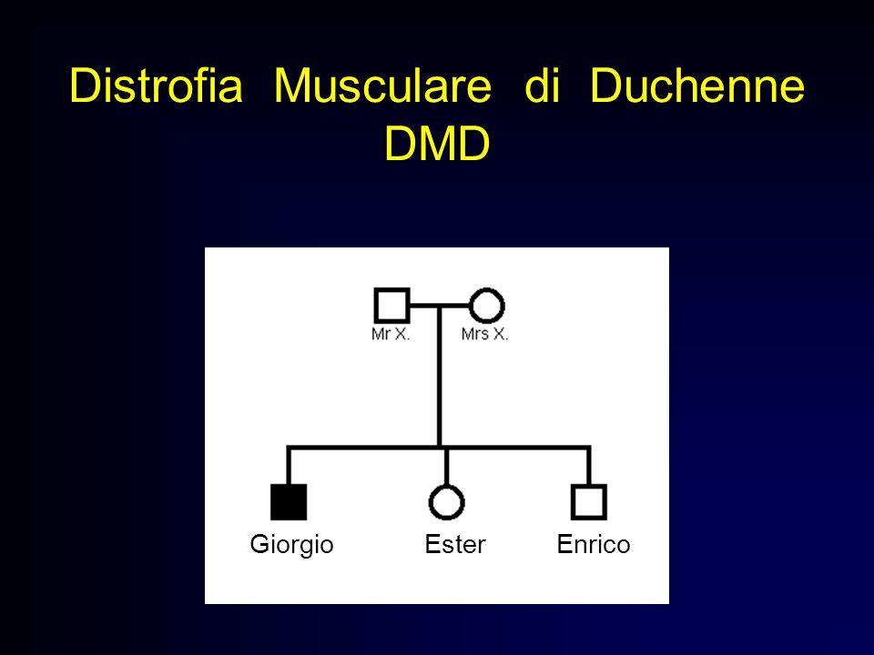 Distrofia Musculare di Duchenne DMD Giorgio Ester Enrico