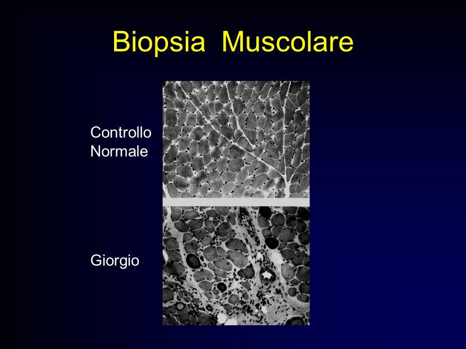 Biopsia Muscolare Controllo Normale Giorgio