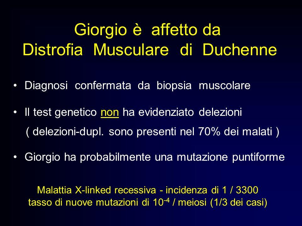 Giorgio è affetto da Distrofia Musculare di Duchenne Diagnosi confermata da biopsia muscolare Il test genetico non ha evidenziato delezioni ( delezion