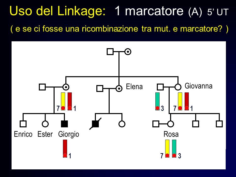 Uso del Linkage: 1 marcatore (A) 5 UT ( e se ci fosse una ricombinazione tra mut. e marcatore? ) Enrico Ester Giorgio Rosa Giovanna Elena 1 1 773 73 1