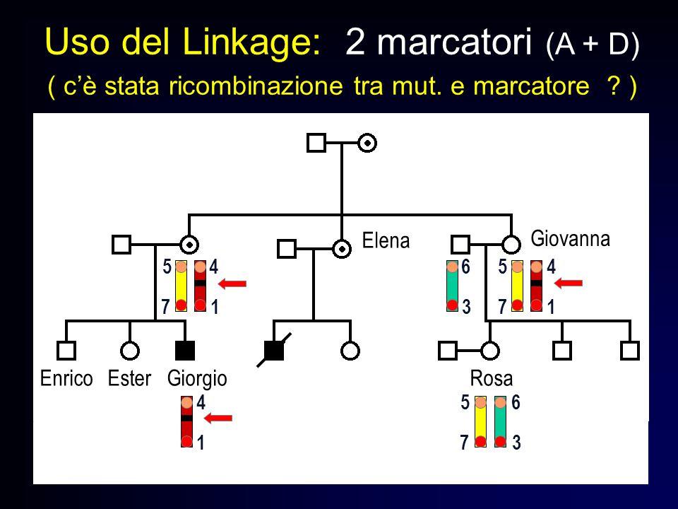 Uso del Linkage: 2 marcatori (A + D) ( cè stata ricombinazione tra mut. e marcatore ? ) Enrico Ester Giorgio Rosa Giovanna Elena 1 1 773 7 4 4 556 5 3