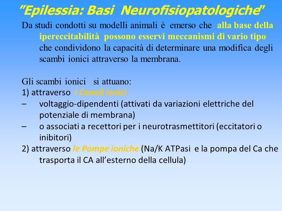 Epilessia: Basi Neurofisiopatologiche Da studi condotti su modelli animali è emerso che alla base della ipereccitabilità possono esservi meccanismi di