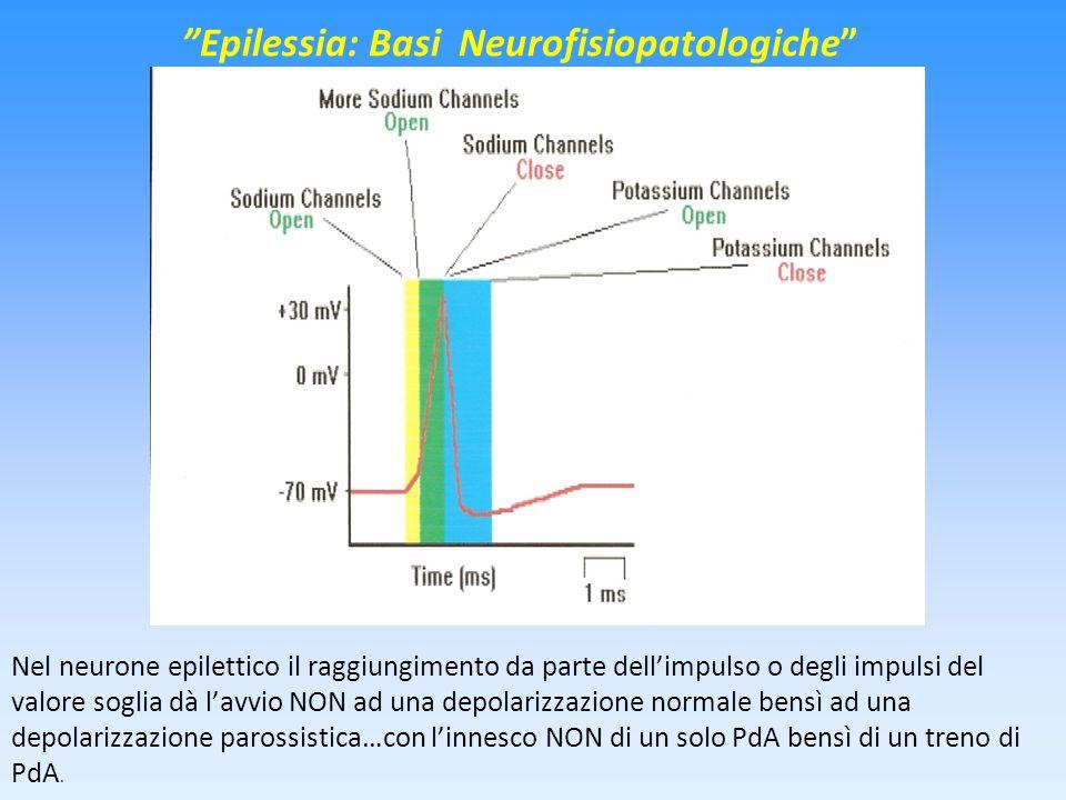 Epilessia: Basi Neurofisiopatologiche Nel neurone epilettico il raggiungimento da parte dellimpulso o degli impulsi del valore soglia dà lavvio NON ad