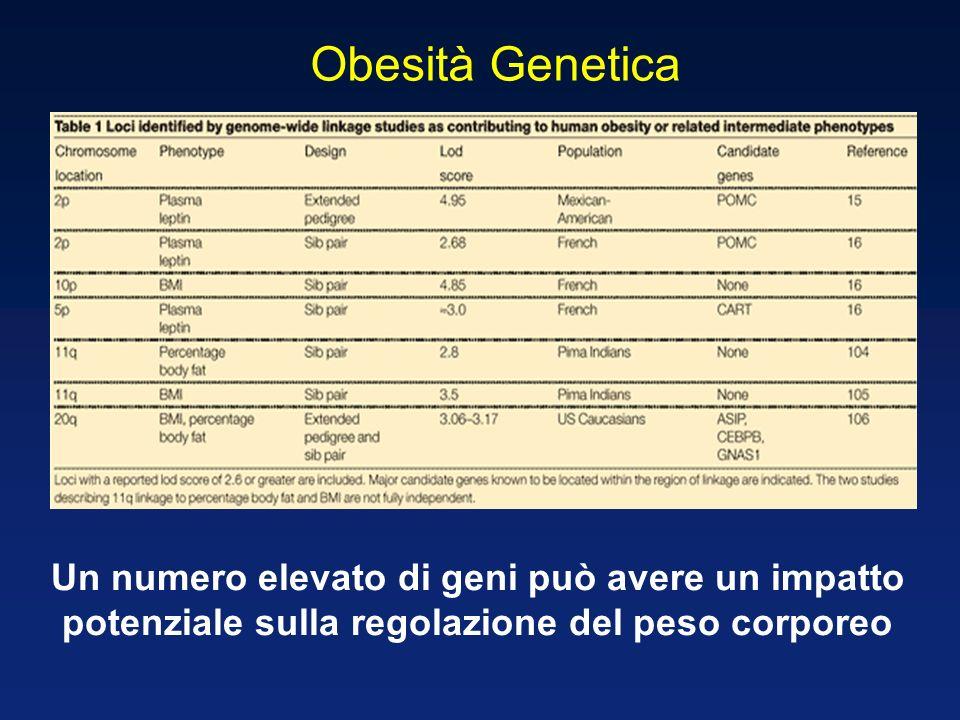 Obesità Genetica Un numero elevato di geni può avere un impatto potenziale sulla regolazione del peso corporeo