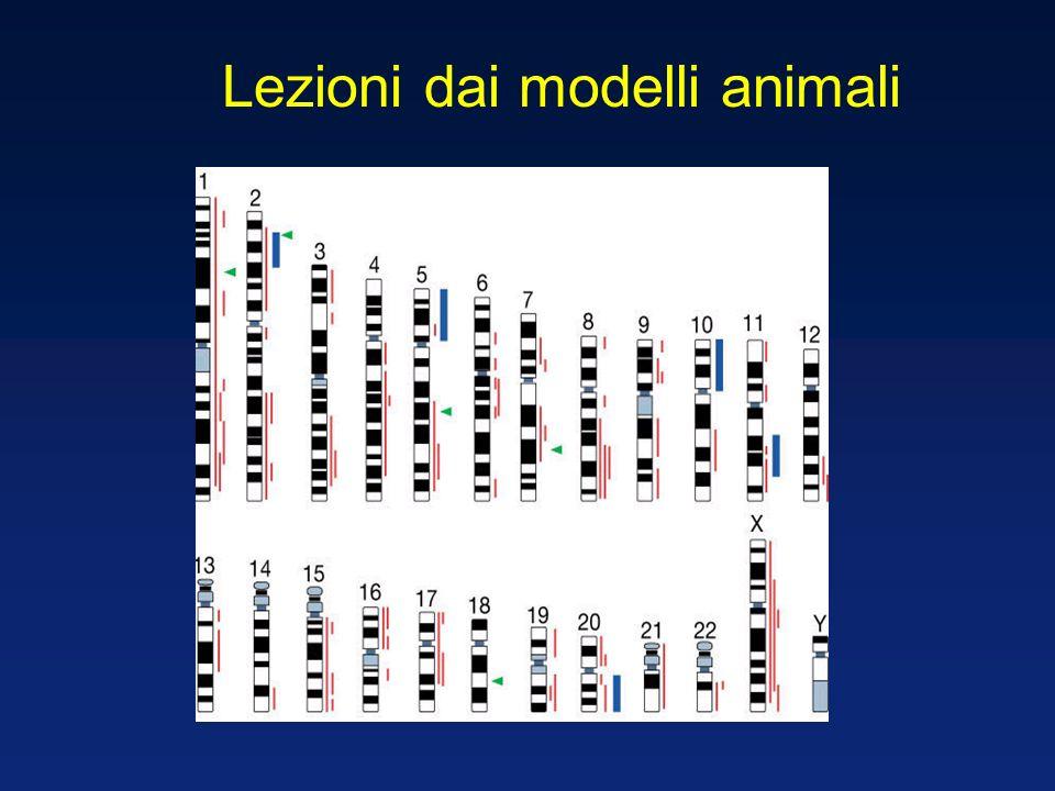 Lezioni dai modelli animali