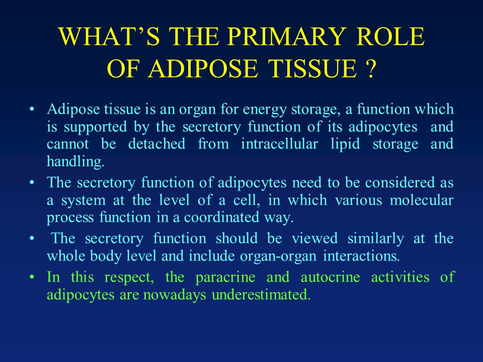 WHATS THE PRIMARY ROLE OF ADIPOSE TISSUE .