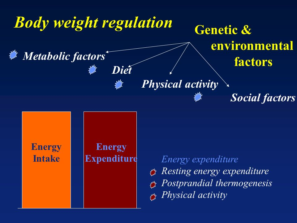 Energy expenditure Resting energy expenditure Postprandial thermogenesis Physical activity Genetic & environmental factors Metabolic factors Diet Physical activity Social factors Energy Intake Energy Expenditure Body weight regulation