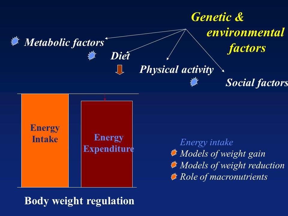 Energy Intake Energy Expenditure Body weight regulation Genetic & environmental factors Metabolic factors Diet Physical activity Social factors Energy intake Models of weight gain Models of weight reduction Role of macronutrients