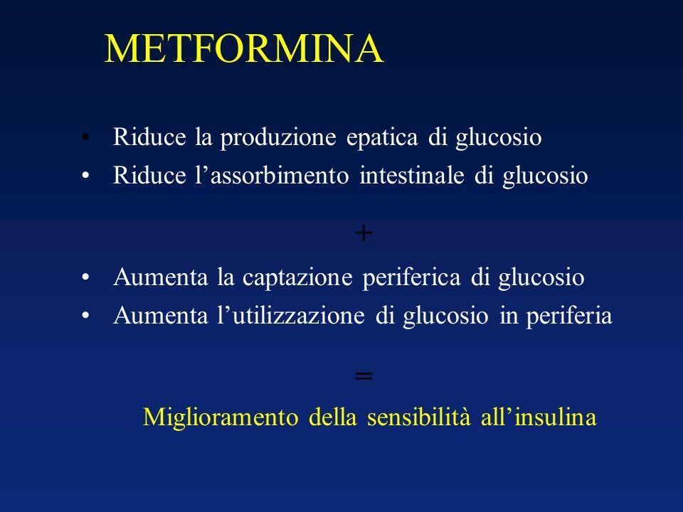 Riduce la produzione epatica di glucosio Riduce lassorbimento intestinale di glucosio Aumenta la captazione periferica di glucosio Aumenta lutilizzazi