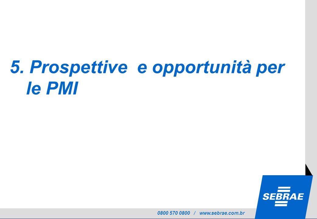 0800 570 0800 / www.sebrae.com.br 5. Prospettive e opportunità per le PMI