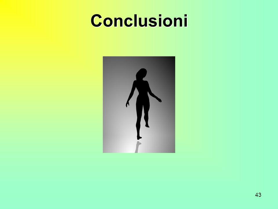43 Conclusioni