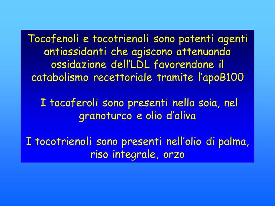 Tocofenoli e tocotrienoli sono potenti agenti antiossidanti che agiscono attenuando ossidazione dellLDL favorendone il catabolismo recettoriale tramite lapoB100 I tocoferoli sono presenti nella soia, nel granoturco e olio doliva I tocotrienoli sono presenti nellolio di palma, riso integrale, orzo