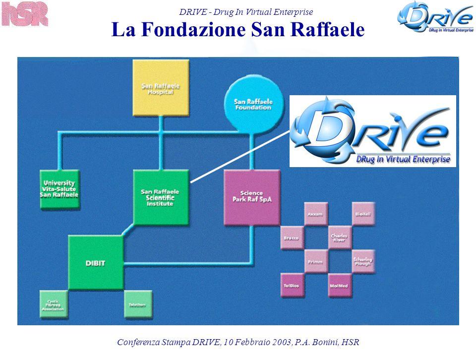 DRIVE - Drug In Virtual Enterprise La Fondazione San Raffaele Conferenza Stampa DRIVE, 10 Febbraio 2003, P.A. Bonini, HSR
