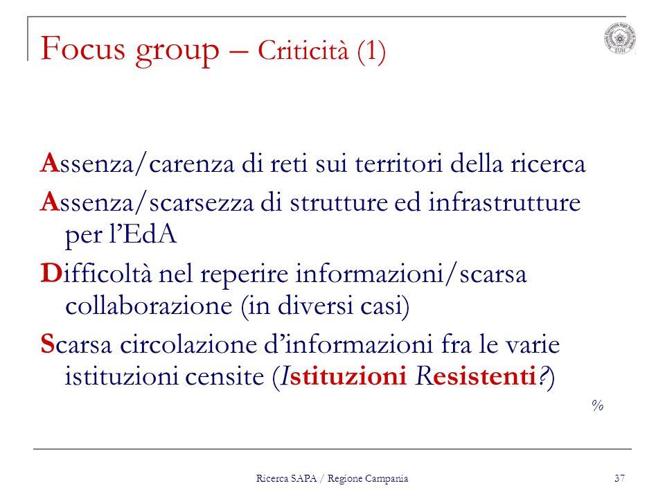 Ricerca SAPA / Regione Campania 37 Focus group – Criticità (1) Assenza/carenza di reti sui territori della ricerca Assenza/scarsezza di strutture ed i