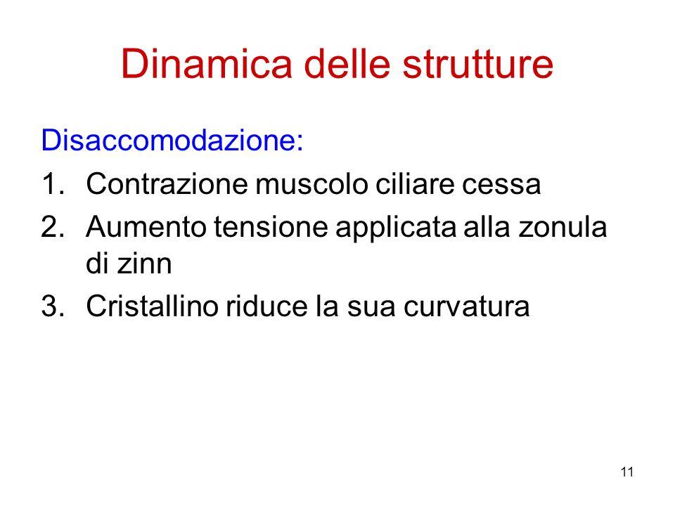 11 Dinamica delle strutture Disaccomodazione: 1.Contrazione muscolo ciliare cessa 2.Aumento tensione applicata alla zonula di zinn 3.Cristallino riduc
