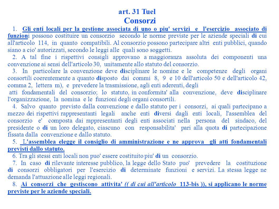 art. 31 Tuel Consorzi 1.