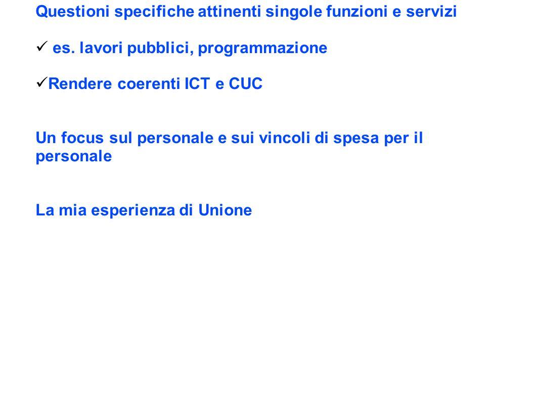 Questioni specifiche attinenti singole funzioni e servizi es.