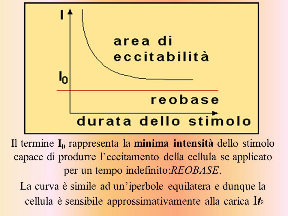 9 Il termine I 0 rappresenta la minima intensità dello stimolo capace di produrre leccitamento della cellula se applicato per un tempo indefinito:REOB