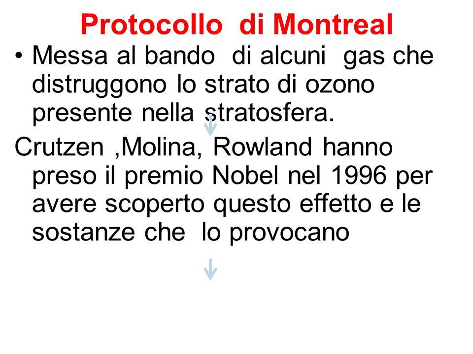 Protocollo di Montreal Messa al bando di alcuni gas che distruggono lo strato di ozono presente nella stratosfera. Crutzen,Molina, Rowland hanno preso