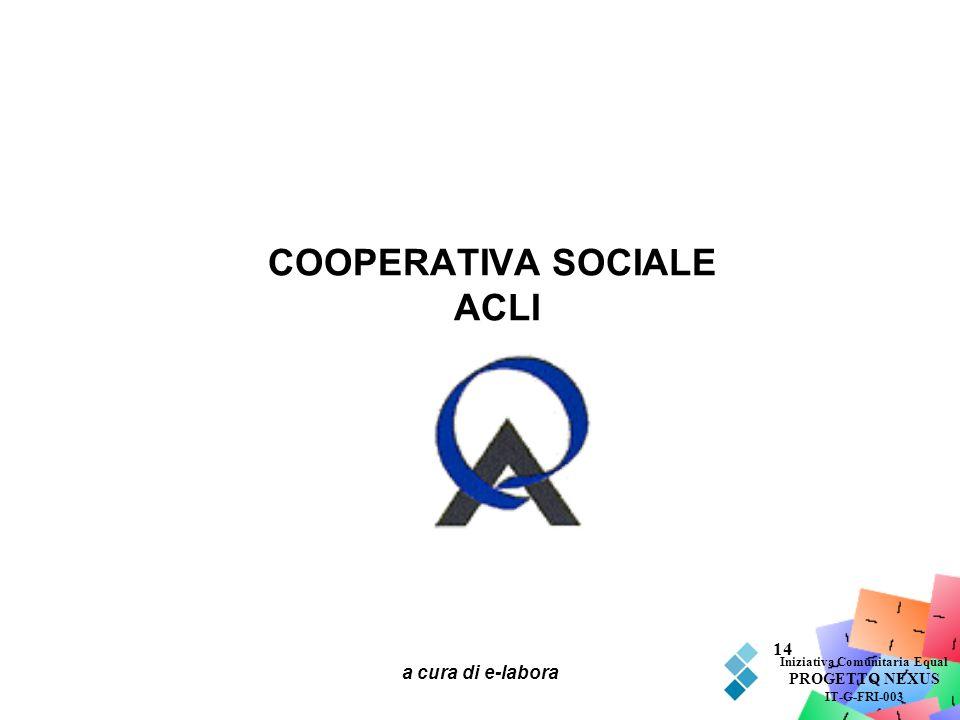 a cura di e-labora 14 COOPERATIVA SOCIALE ACLI Iniziativa Comunitaria Equal PROGETTO NEXUS IT-G-FRI-003
