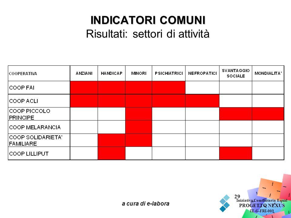 a cura di e-labora 29 INDICATORI COMUNI INDICATORI COMUNI Risultati: settori di attività Iniziativa Comunitaria Equal PROGETTO NEXUS IT-G-FRI-003