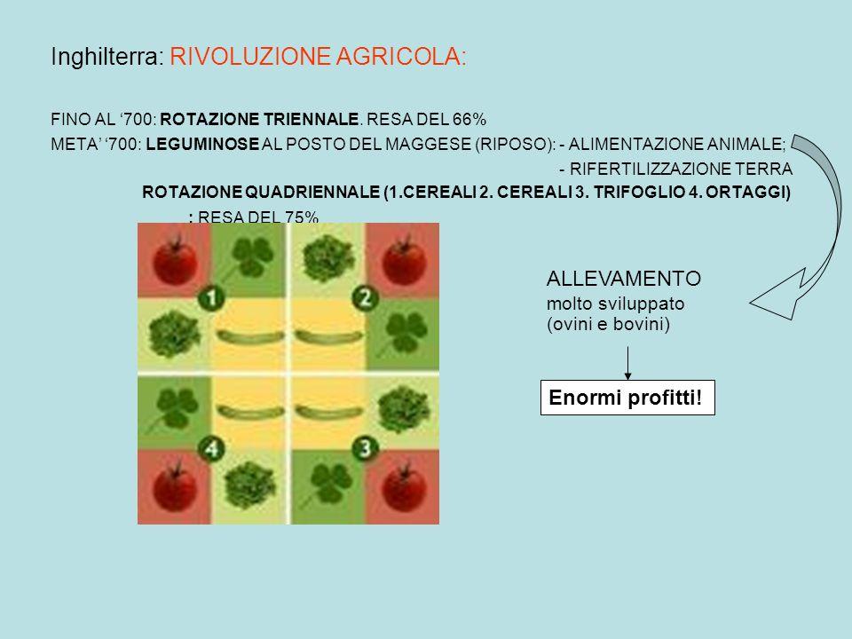 Inghilterra: RIVOLUZIONE TECNOLOGICA: SEMINATRICE ARATRO IN FERRO Agricoltura più efficiente: dalleconomia di sussistenza a quella di mercato.