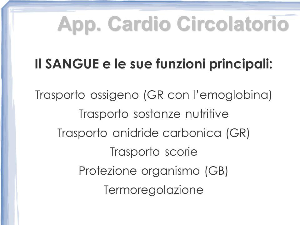 App. Cardio Circolatorio Il SANGUE e le sue funzioni principali: Trasporto ossigeno (GR con lemoglobina) Trasporto sostanze nutritive Trasporto anidri