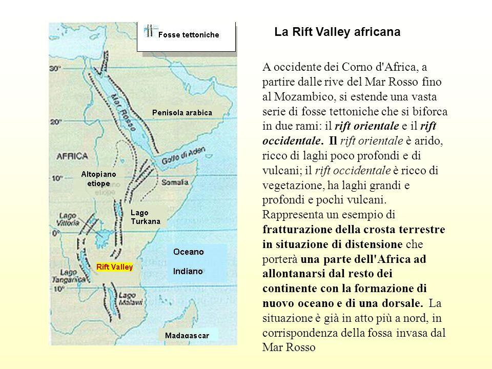 A occidente dei Corno d'Africa, a partire dalle rive del Mar Rosso fino al Mozambico, si estende una vasta serie di fosse tettoniche che si biforca in
