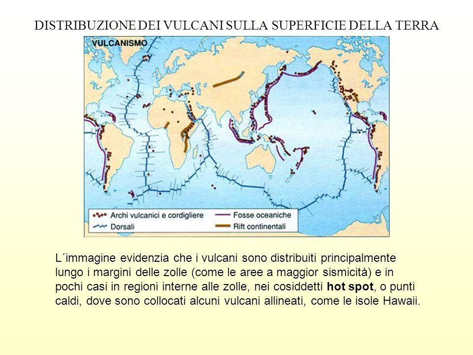 DISTRIBUZIONE DEI VULCANI SULLA SUPERFICIE DELLA TERRA L´immagine evidenzia che i vulcani sono distribuiti principalmente lungo i margini delle zolle