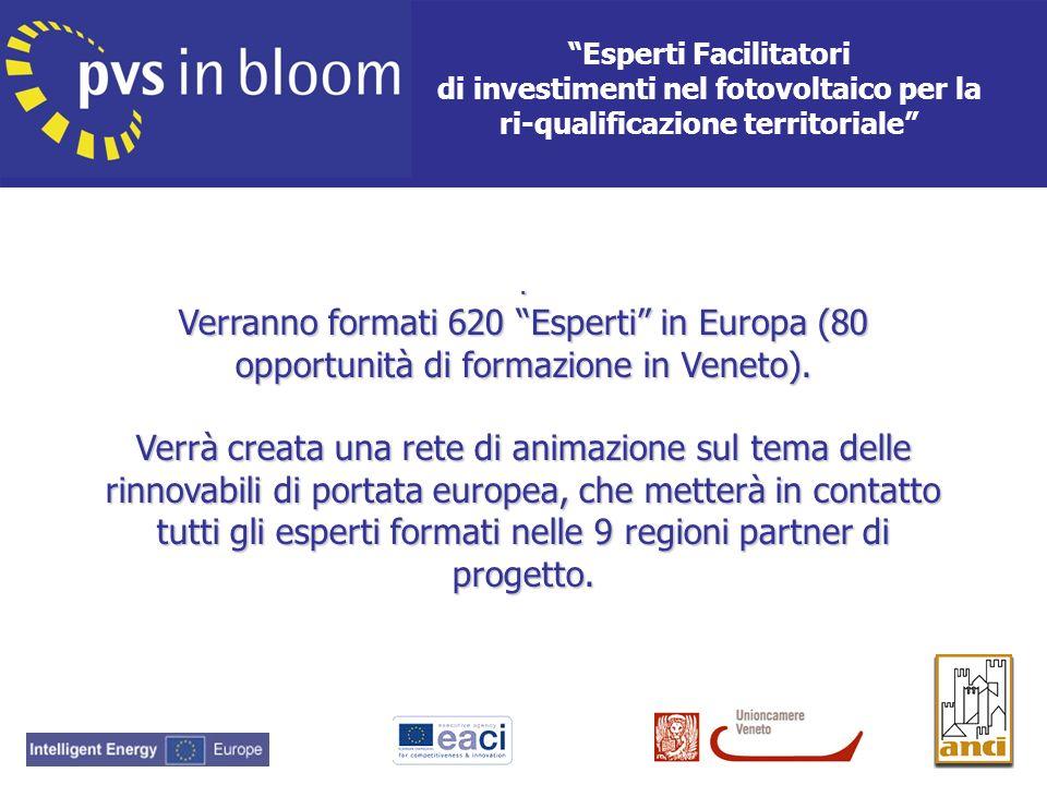 . Verranno formati 620 Esperti in Europa (80 opportunità di formazione in Veneto). Verrà creata una rete di animazione sul tema delle rinnovabili di p