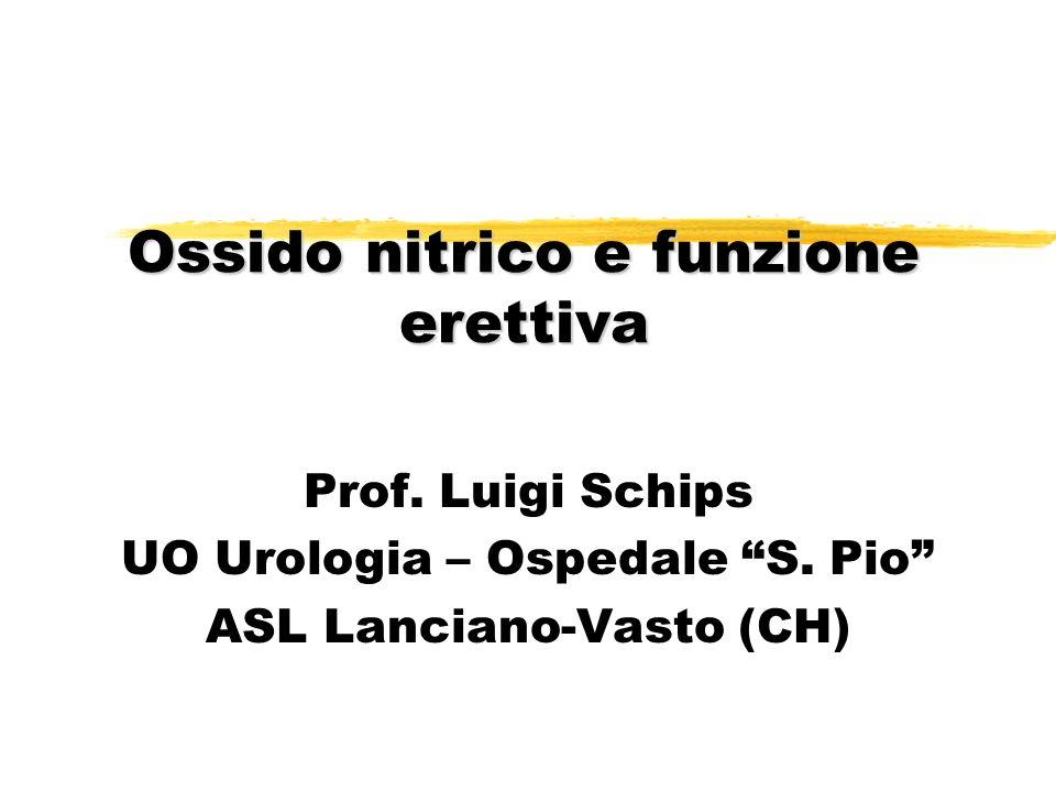 Ossido nitrico e funzione erettiva Prof. Luigi Schips UO Urologia – Ospedale S. Pio ASL Lanciano-Vasto (CH)