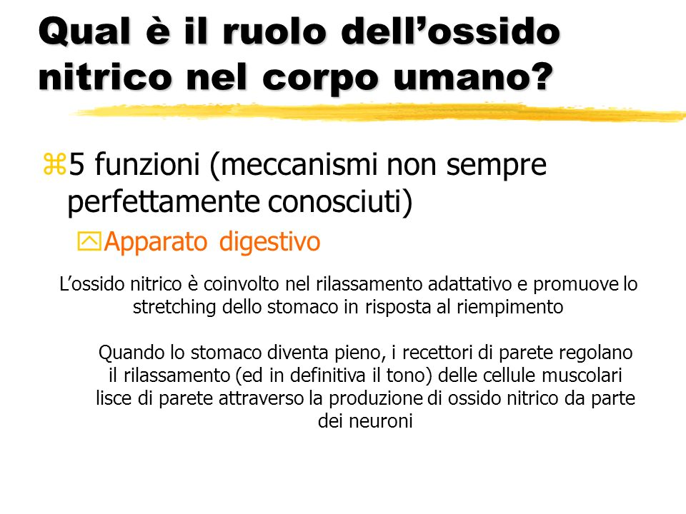 Qual è il ruolo dellossido nitrico nel corpo umano? z5 funzioni (meccanismi non sempre perfettamente conosciuti) yApparato digestivo Lossido nitrico è