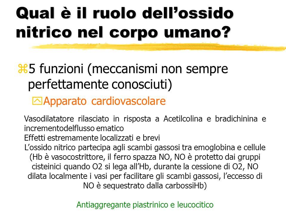 Qual è il ruolo dellossido nitrico nel corpo umano? z5 funzioni (meccanismi non sempre perfettamente conosciuti) yApparato cardiovascolare Vasodilatat