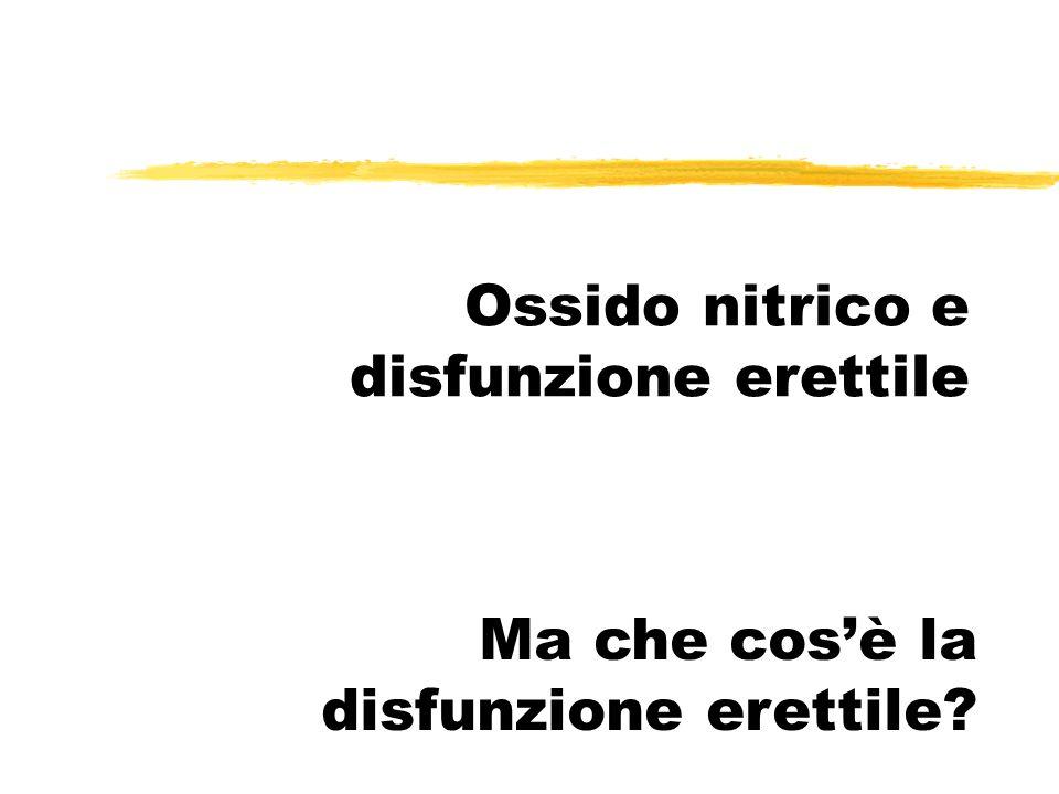 Ossido nitrico e disfunzione erettile Ma che cosè la disfunzione erettile?
