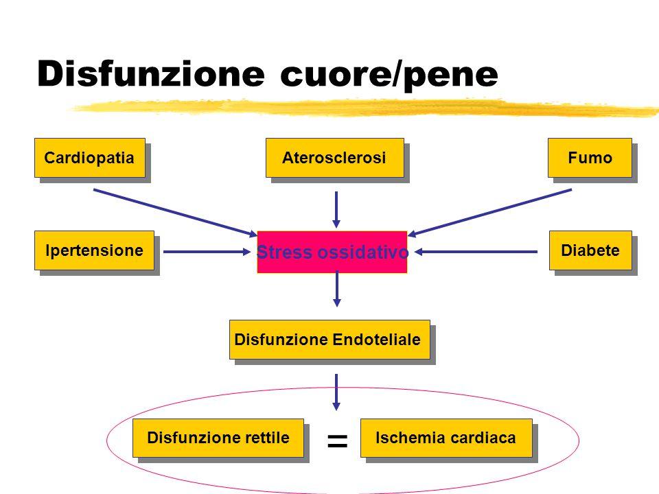 Disfunzione cuore/pene Cardiopatia Aterosclerosi Fumo Ipertensione Stress ossidativo Diabete Disfunzione Endoteliale Disfunzione rettile Ischemia card