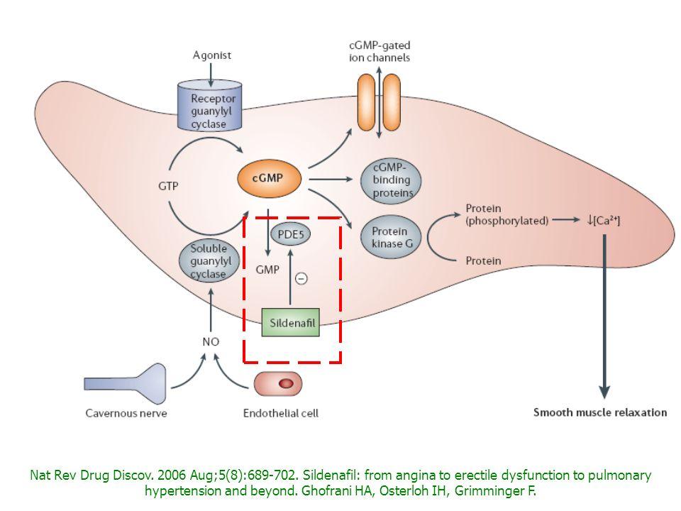 Nat Rev Drug Discov. 2006 Aug;5(8):689-702. Sildenafil: from angina to erectile dysfunction to pulmonary hypertension and beyond. Ghofrani HA, Osterlo