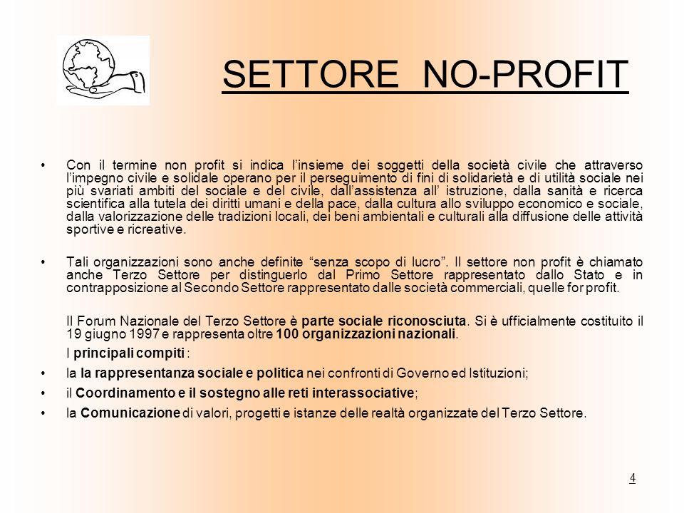 SETTORE NO-PROFIT Con il termine non profit si indica linsieme dei soggetti della società civile che attraverso limpegno civile e solidale operano per