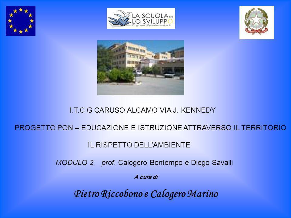I.T.C G CARUSO ALCAMO VIA J. KENNEDY PROGETTO PON – EDUCAZIONE E ISTRUZIONE ATTRAVERSO IL TERRITORIO IL RISPETTO DELLAMBIENTE MODULO 2 prof. Calogero
