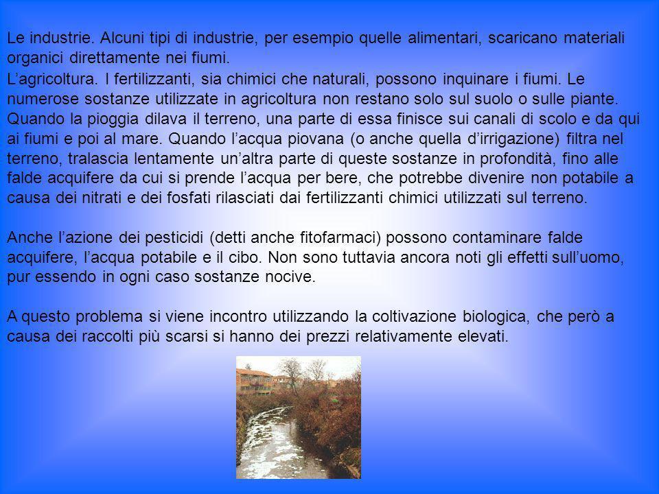 Lagricoltura. I fertilizzanti, sia chimici che naturali, possono inquinare i fiumi. Le numerose sostanze utilizzate in agricoltura non restano solo su